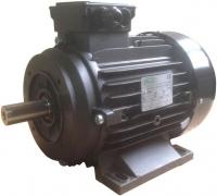 Электродвигатель для АВД Ravel 5,5 kW - внешний вал